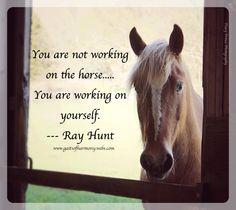 Thumper! <3 www.gaitsofharmony.webs.com #horse #meme #equine #saying