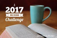 2017 Bible Reading Challenge (growing4life.net)