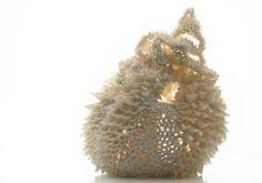 Teasel_Noala_Odonovan_Epistrophy, Modern Art and Design, Sculpture Ceramics, 02