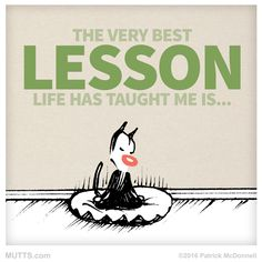 Cats teach us so much about being present in life. What have you learned? #MUTTSManifesto