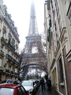 Rose tea in Paris