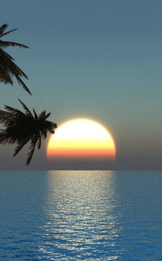 There's nothing more beautiful than watching a sunset over the ocean! Except maybe watching a sunrise over the ocean! Beautiful Sunrise, Beautiful Beaches, Beautiful Moon, Beautiful Scenery, Belle Photo, Beautiful World, Beautiful Moments, Wonders Of The World, Nature Photography