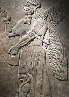 Relief depicting a Winged Genius from the Northwest Palace of Ashurnasirpal II at the Assyrian Imperial capital of Nimrud (883-859 BCE). Brooklyn Museum, Brooklyn, NY. Photo by Babylon Chronicle