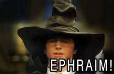 If they used the sorting hat to determine what tribe you're from.