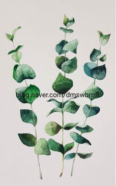 watercolor, eucalyptus, plant, green, nature