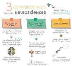3 connaissances neurosciences-apprendre -Eric Gaspar- vidéo TedxAlsace-01
