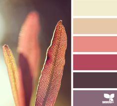 Nature Tones - http://design-seeds.com/home/entry/nature-tones24