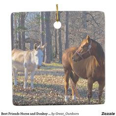 Shop Best Friends Horse and Donkey Hanging Ornaments created by Great_Outdoors. Hanging Ornaments, Christmas Ornaments, Holiday Traditions, Moose Art, Best Friends, Horses, Seasons, Traditional, Donkey