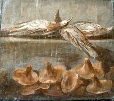 Roman fresco depicting birds and mushrooms, Pompeii.