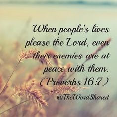 No, Proverbs, YOU ARE WRONG=) When your life pleases the Lord, your ennemies are NOT in peace with you, and that's GOOD. I don't want monsanto in peace with me Proverbs 16 7, Book Of Proverbs, Bible Scriptures, Bible Quotes, Let Go And Let God, Word Of God, Christian Quotes, Gods Love, Inspire Me