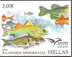 Francobollo: Euromed 2016 - Fish of the Mediterranean (Grecia) (Unione postale Euromed) Mi:GR Stamp Collecting, Postage Stamps, Greece, Fish, Andorra, Cards, Animals, Countries, Collection