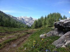 Wandern in Flachauwinkl - Hafeichtalmen #visit flachau #flachau #flachauwinkl #feelaustria