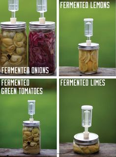 How-to-Ferment foods