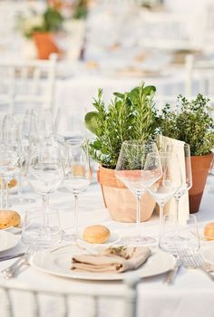 rustic potted herbs wedding centerpiece / http://www.himisspuff.com/potted-plants-wedding-decor-ideas/9/