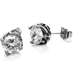 Complete in Specifications Unisex Titanium Earrings