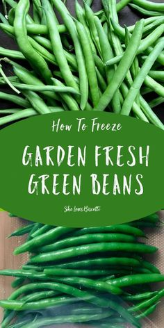 Here is a step by step tutorial on How to freeze Garden Fresh Green Beans. This simple guide will demonstrate how easy it is to preserve green beans so that they can be enjoyed throughout the winter months. Great in hearty winter soups, casseroles and side vegetables. ♥♥♥ Click thru to see and read how easy it is to do. ♥♥♥ Make sure to save the pin or better yet be part of the community and never miss a post... can't wait to hear from you on the She Loves Bis