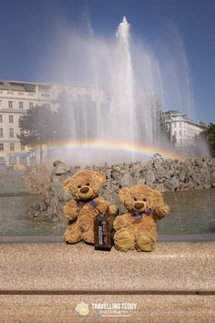 Teddy Bear Images, Love Bear, Cute Quotes, Teddy Bears, Lonely, Travelling, Random, Funny, Life