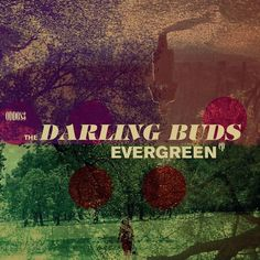 #thedarlingbuds are back with a new single #evergreen released later this month... Listen to the #nearperfectpitch weekly #music #podcast ... #vinyl #vinyljunkie #lp #records #audiophile #stereophile #indie #alternative #shoegaze #britpop #punk #postpunk #newwave #madchester #nme #c86 #radio #itunespodcast #googleplay #ckcufm #bandcamp #pledgemusic