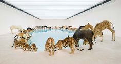 Cai Guo-Qiang (b.1957 China), Installation view of Heritage, 2013…