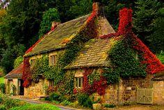 cottage cottage cottage architecture