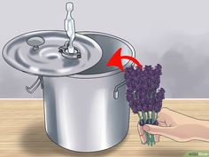How to Make Essential Oils (with Pictures) - wikiHow