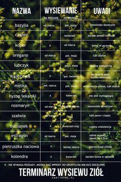 Types Of Urban Gardening - Urban Gardening