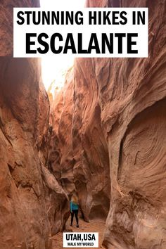 best Grand Staircase Escalante hikes and stunning slot canyons you can visit., The best Grand Staircase Escalante hikes and stunning slot canyons you can visit., The best Grand Staircase Escalante hikes and stunning slot canyons you can visit. Bryce Canyon, Slot Canyon, Us Travel Destinations, Places To Travel, Escalante Utah, Escalante National Monument, Death Valley, Arches Nationalpark, Utah Vacation