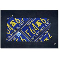 Trademark Fine Art 'Pennsylvania License Plate Map' Canvas Art by Design Turnpike, Size: 22 x 32, Multicolor