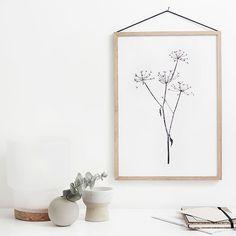 RK Designin September Flowers -julistesarja juhlistaa unohdettujen kukkien kauneutta. Riikka Kantinkosken suunnittelemia julisteita kuvittavat hennot kasvien siluetit, jotka on painettu valkoiselle mattapaperille.