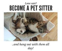 52 Best Artes de petsitting images in 2018   Pet sitting