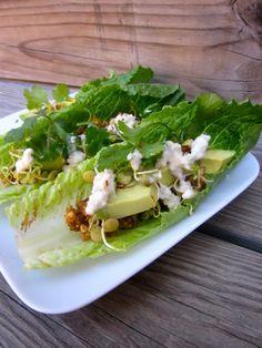 http://articles.elissagoodman.com/2012/05/8-rockin-raw-food-recipes/