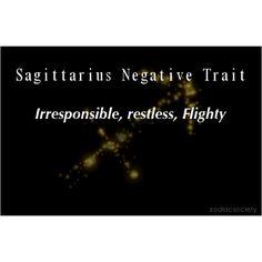 Sagittarius http://zodiacsociety.tumblr.com/