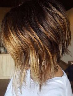 Brown with golden blonde hair color.