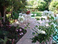 Eden abounds Pool Coping, Garden, Outdoor Decor, Plants, Range, Design, Courtyards, Garten, Cookers