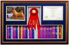 Ribbon shadow box