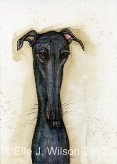 A Little Possession  Greyhound Art PRINT by AlmostAnAngel66, £15.00