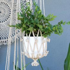 Our handmade eco-friendly macrame plant hangers are designed to display your indoor plants with unique flair. Create a garden of hanging plants whilst saving some precious counter space. Check out our handmade eco-friendly macrame plant hangers. Colour: Natural. Hanging Plants, Potted Plants, Indoor Plants, Macrame Plant Hangers, Plant Pots, Counter Space, Looking Gorgeous, Jute, Balcony