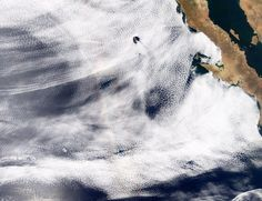 Glory-Baja-California.jpg 1445×1112 pixels