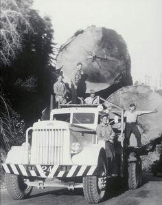 1950 Pete