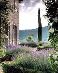 Provence Stone & Living - Immobilier de prestige - Résidentiel & Investissement // Stone & Living - Prestige estate agency - Residential & Investment www.stoneandliving.com