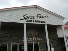 Space Farms - Yes a zoo and a museum in the middle of New Jersey.  Live tigers, monkeys, a black leopard, snakes, crocodiles, bears, lemurs, and more, surrounded by a dozen large houses filled with collections of thousands of guns, toys, classic cars, carriages, motorcycles, tools, costumes, etc., from the early 1800s to today.  They carry more on Civil War and American Indian culture than the Museum of Natural History.