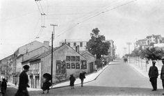 Avenida Alvares Cabral - c.1930