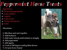 Peppermint Horse Treats. I will have to make these for  my horse :)