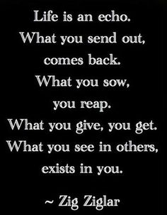 Life is an echo. What you send out, comes back. What you sow, you reap. What you give, you get. What you see in others, exists in you. -Zig Ziglar