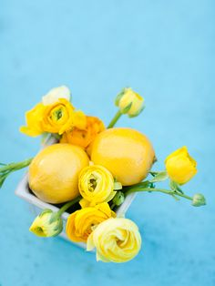 Lemon centerpiece ideas for Ya-Ya
