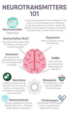 Neurotransmitters 101 - Image Credits: Premier Health And Wellness Group Brain Anatomy, Anatomy And Physiology, Premier Health, Brain Facts, Nursing School Notes, Medical School, Brain Science, Computer Science, Life Science