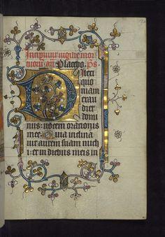Illuminated Manuscript, Doffinnes Hours, Floral Decoration, Walters Manuscript W.185, fol. 172r
