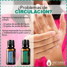Circulación Essential Oils Guide, Essential Oil Uses, Young Living Essential Oils, Doterra Blends, Doterra Essential Oils, Bio Oil Stretch Marks, Esential Oils, Body Hacks, Oils For Skin
