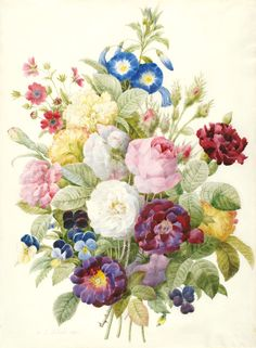 [Bouquet of flowers], watercolor on vellum by Pierre-Joseph Redouté (1759-1840)