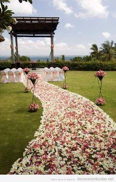 Pasillo de pétalos hacia el altar, decoración de bodas en el jardín